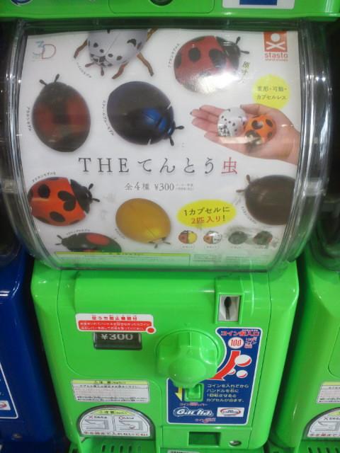 THEてんとう虫.jpg